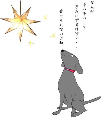 星を見上げる犬