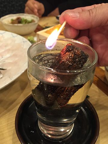 0101ひれ酒