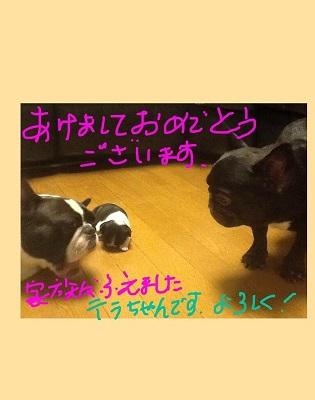 IMG_8881.jpg