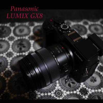 LUMIX GX8 160102