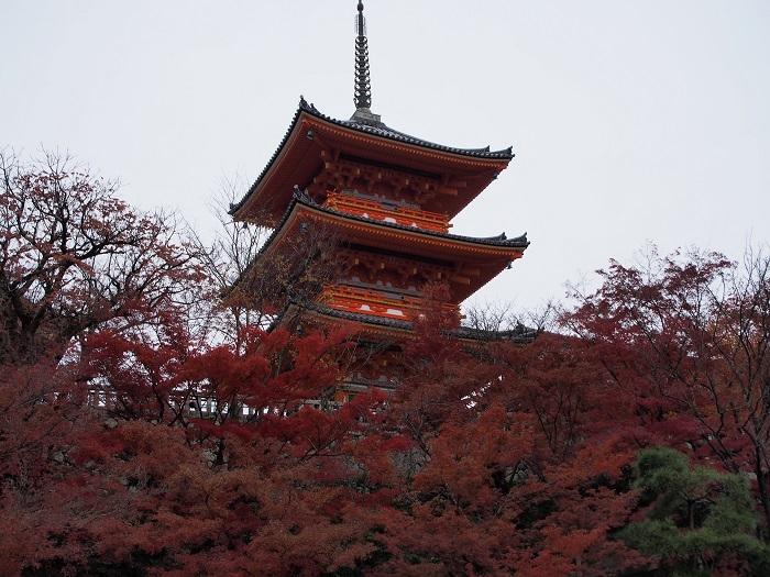 京都2_15_12_06