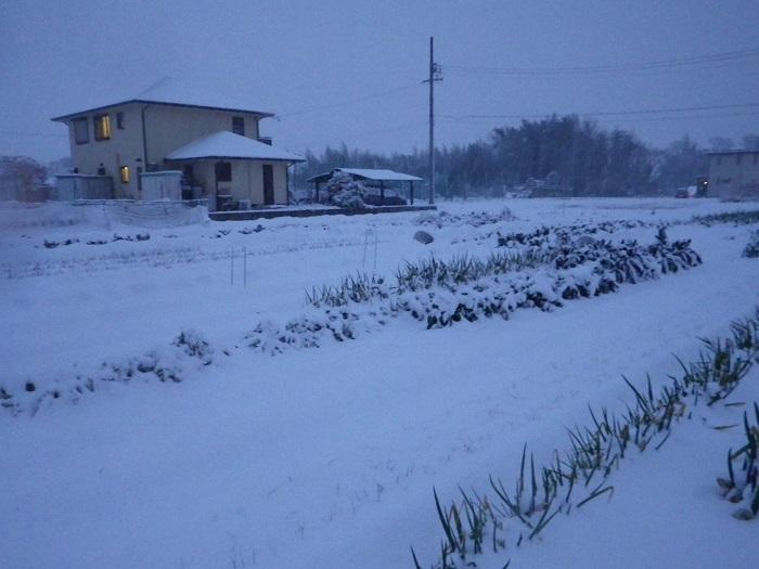 雪3_16_01_20