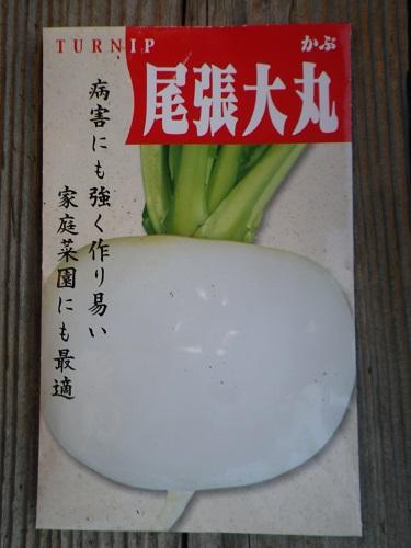 カブ【尾張大丸】種袋