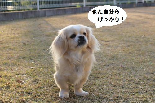 024_convert_20160104221938.jpg