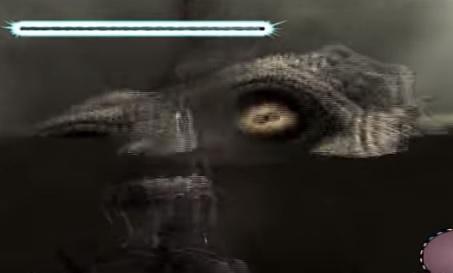 10体目の目