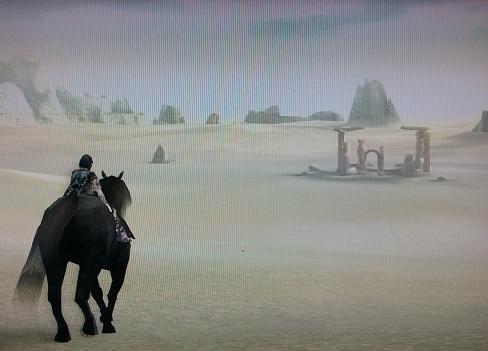 13体目住処の砂丘