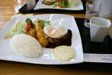 パパスランチinパパスランドさっつるレストラン パパス (6)_R