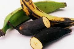 plantain2.jpg