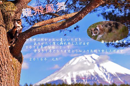 1601_cart2.jpg