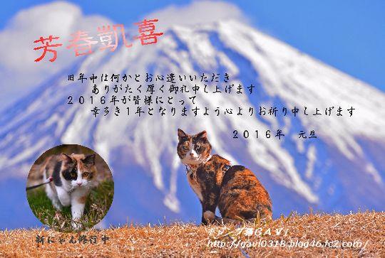 1601_cart3.jpg