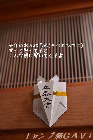 160204_1145.jpg