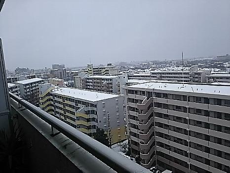 雪が・・・・