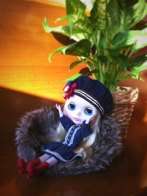 IMG_5594aa.jpg