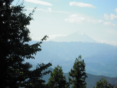 景信山から富士山