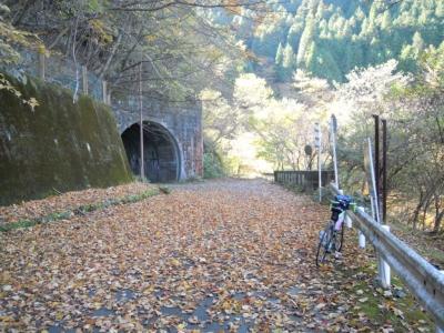 トンネルの道志側