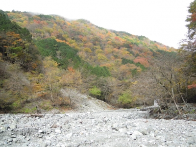 中津川河原151118