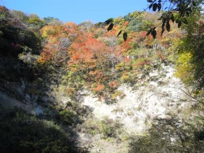 梅が瀬渓谷黄葉