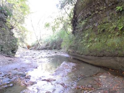 川を渡る1201
