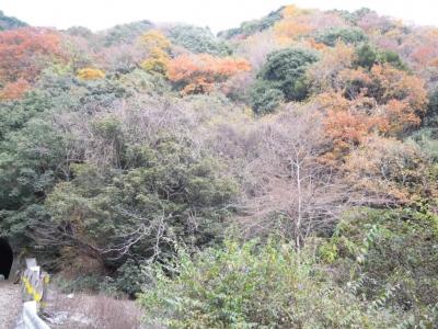 神山トンネル12、10
