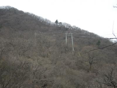 大山山頂へ続く電線