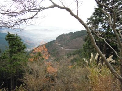 ヤビツ峠への道12、10