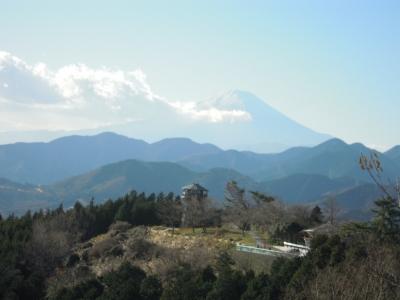 菜の花台と富士山1219