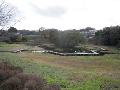 厳島湿生公園151221