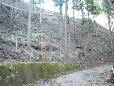 上の道奥野林道160102