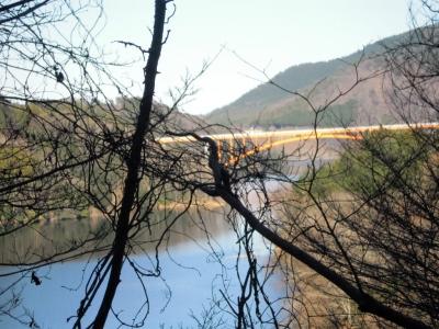 新井林道から160102