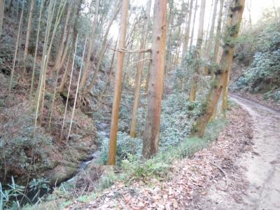 谷戸川沿い160120
