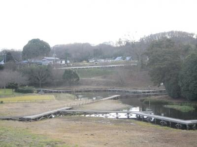 厳島湿生公園160120