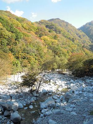 河原の白い石