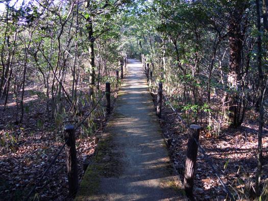 平和公園の散策路。