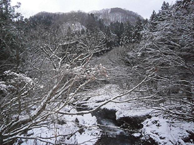 冬の真瀬川
