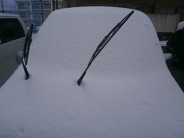 雪のあさ1