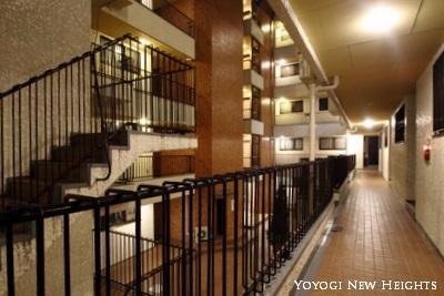 yoyogi-night0215002.jpg