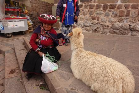 クスコの民族衣装を着た女性とリャマ