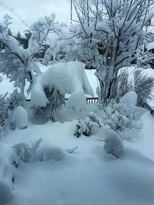 窓の外の雪は・・・・