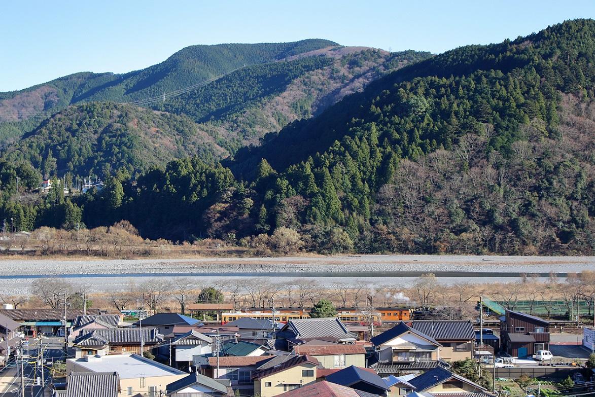 2015ooigawa115.jpg