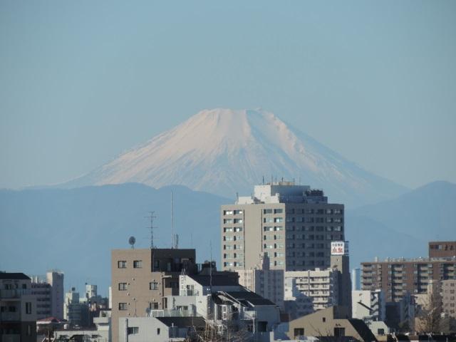元日の富士