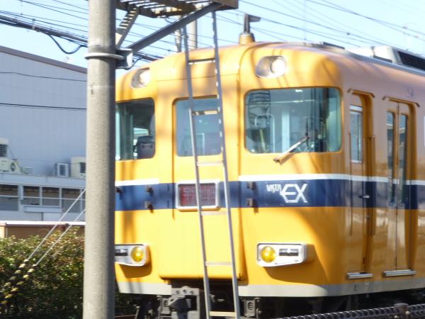 P1070725.jpg