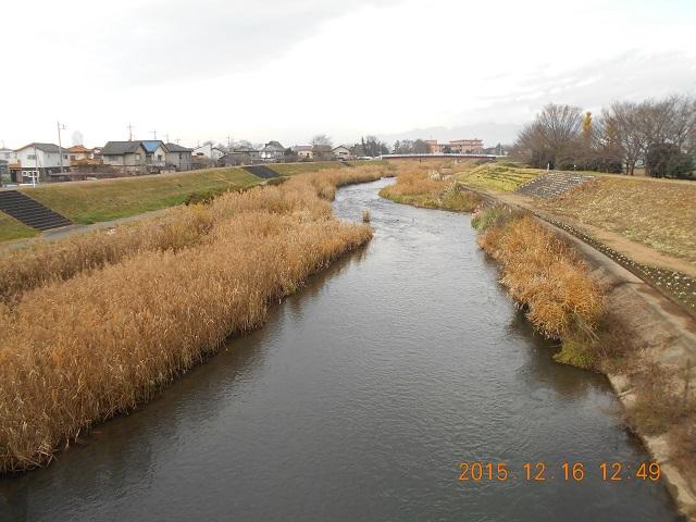 DSCN0049桃の川大宝橋上流.jpg