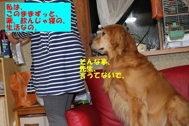 IMG_5708_20160119195727703.jpg