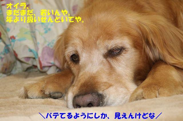 IMG_6292.jpg