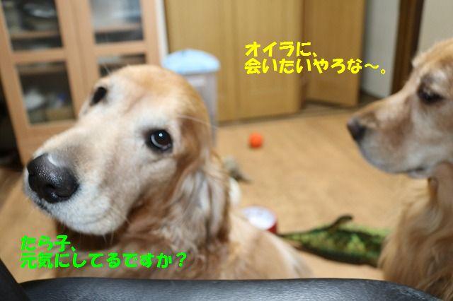 IMG_6320.jpg