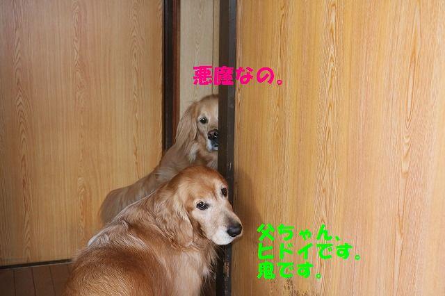 IMG_6529_20160130200213801.jpg