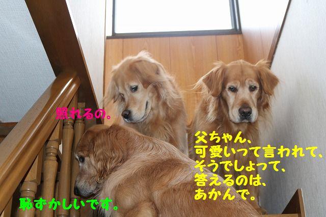 IMG_6632.jpg