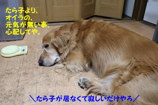IMG_7007.jpg