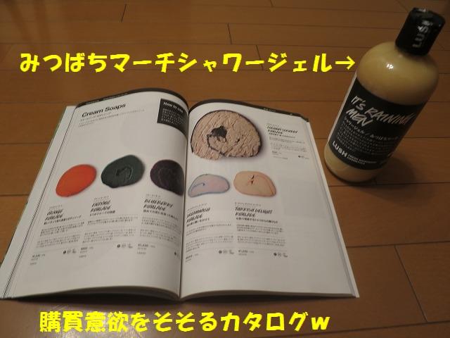 IMG_7110_1.jpg