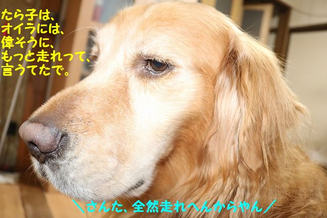 IMG_7352.jpg